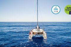 Funchal: Observação Golfinhos e Baleias em Catamarã de Luxo