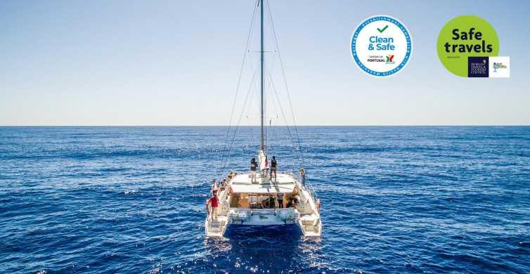 Funchal: Delfin- og hvalsafari med luksuriøs katamaran
