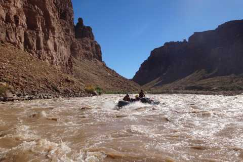 From Moab: Cataract Canyon Whitewater Rafting Experience