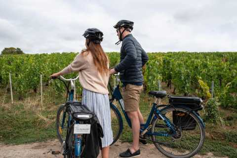 Mareuil-sur-Ay: Self-Guided E-bike Tour to Hautvillers