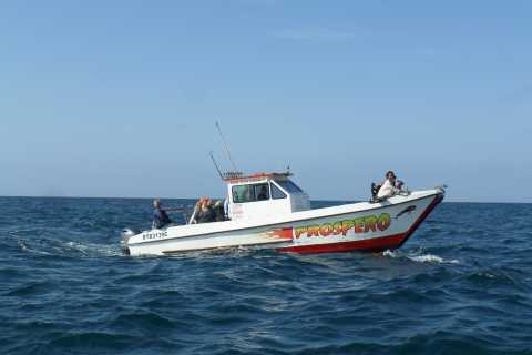Durban: 2-Hour Sea Safari Cruise