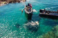 De Cannes: descubra os Calanques do Esterel