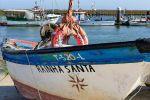 From Tavira: Private Santa Luzia & Ria Formosa Tuk Tuk Tour
