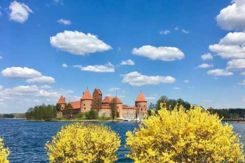 Vilnius: Half-Day Sightseeing Tour to Trakai