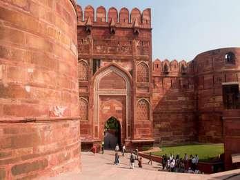 Von Delhi: Ausflug nach Taj Mahal, Wildlife SOS und Agra Fort