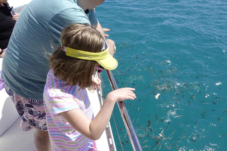 Mahe: Riffsafari im St. Anne Marine National Park