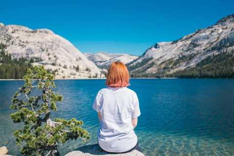 Da El Portal: tour guidato di un'escursione guidata in alta campagna di Yosemite