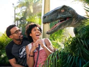 Universal Orlando: Park-to-Park für US- & Kanada-Bewohner