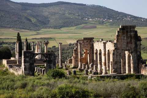 From Rabat: Volubilis and Meknes Full-day Tour