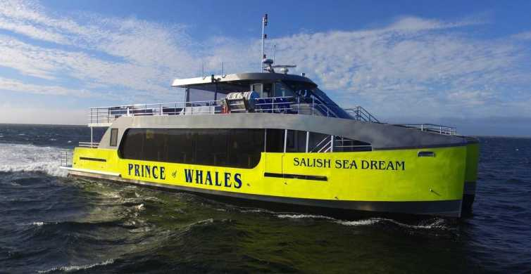 Vancouver, BC: Half-Day Whale Watching Tour