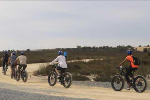 Cape Town: Self Drive E-Bike Safari Tour