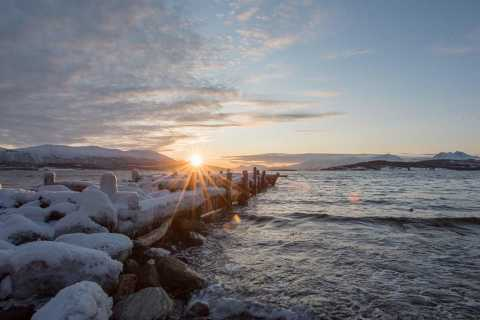 From Tromso: Small-Group Arctic Landscapes Sightseeing Tour
