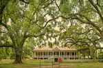 Louisiana Plantation Country Half-Day Tour