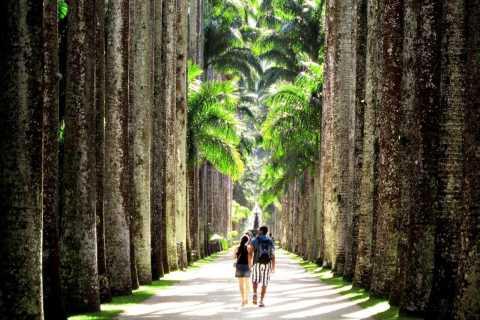 Rio de Janeiro: Botanical Garden Guided Tour