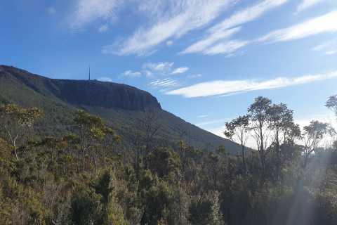 Hobart: Kunanyi/Mount Wellington Guided Hike