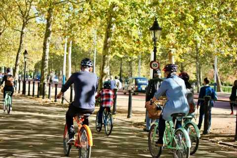 Londen: Private Family Bike Tour