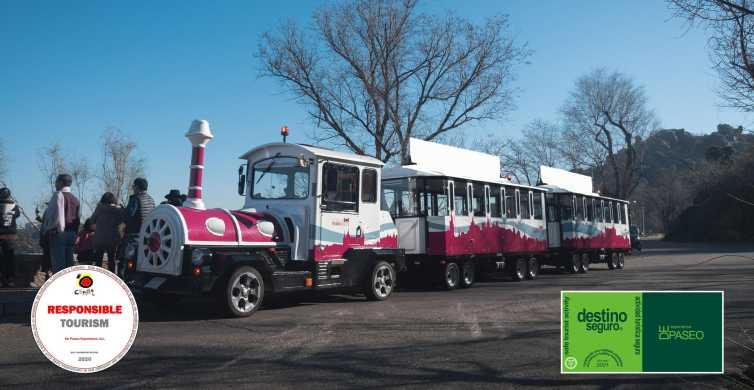 Tourist Train In Toledo