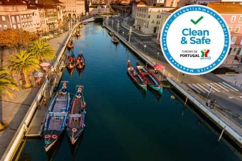 Aveiro Half-Day Tour with Moliceiro Cruise
