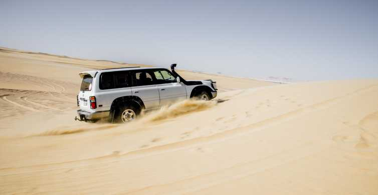 Cairo: Wadi El Hitan Desert Safari, Camel Ride and BBQ Lunch
