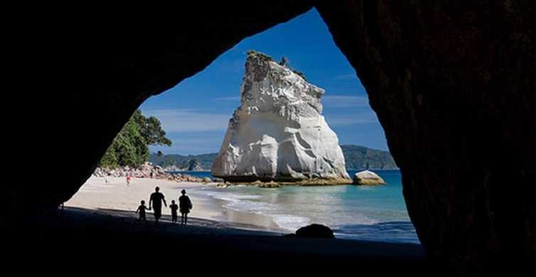 From Auckland: Coromandel Peninsula Full-Day Tour