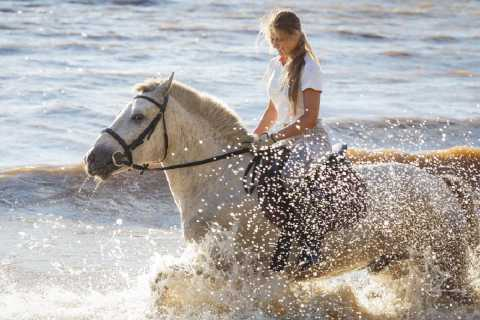 Puntarenas: Horseback Riding & Safari Boat Shore Excursion