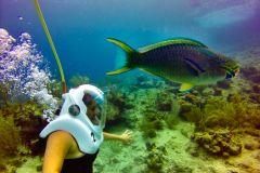 San Andres: Aquanautas Underwater Walk