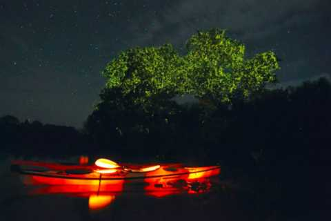Bohol: Private Firefly Watching Tour and Dinner