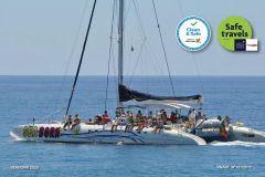 Funchal: Observação de Golfinhos e Baleias em Catamarã