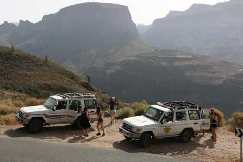 Gran Canaria: Island Highlights Tour med lunch