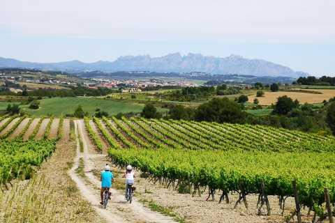 Barcelona: Half-Day Wine and Electric Bike Tour