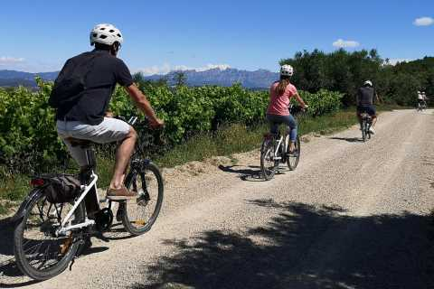 Barcelona : Full-Day Wine Tour with Electric Bike