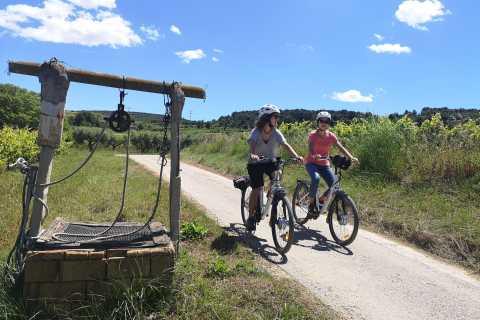 Barcelona: Penedès Classic Bike Wine Tour (Shared Tour)