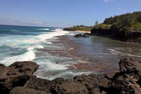 Île Maurice: visite privée du côté sud et des dauphins