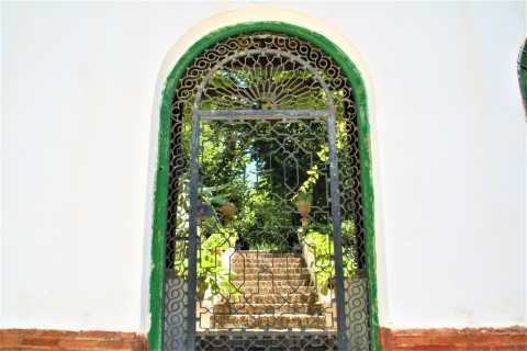 Granada: visita guiada a la ciudad de Cármenes