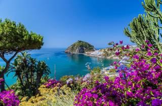 Ab Neapel: Tagestour nach Ischia inklusive Mittagessen
