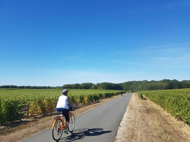 Amboise: Self-Guided Loire Valley E-Bike Tour with Tasting