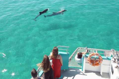 Setúbal, Portugal: Catamaran Dolphin Watching Tour