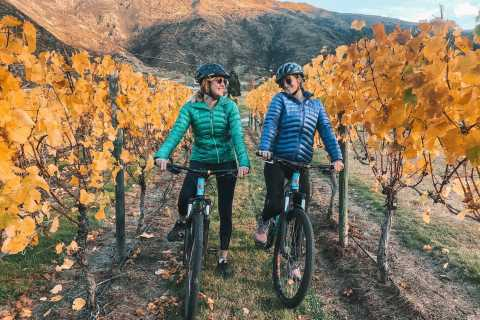 From Queenstown: Self-Guided Wineries Bike Tour