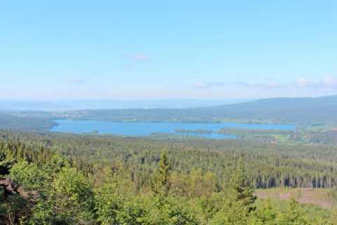 Oslo: Half-Day Panoramic Lakes and Forests Hiking Tour