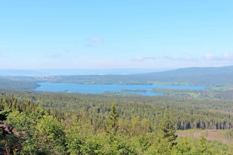 Oslo: Panorama-Wandertour zu Seen und Wäldern
