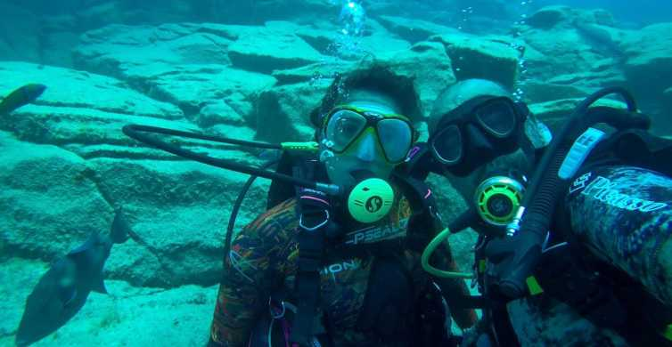 Tenerife: Try Dive in the Protected La Caleta Bay