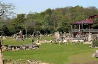 Zoo Leipzig: Tagesticket