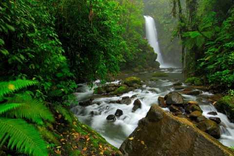 San José: tour privato di un giorno ai giardini delle cascate di La Paz