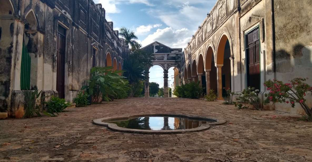 From Mérida: Uxmal, Hacienda Yaxcopoil and Cenote with Lunch