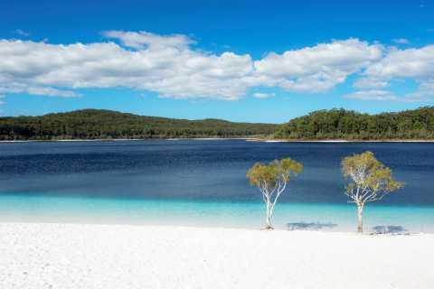 De Hervey Bay: Excursão de ônibus de dia inteiro em Fraser Island