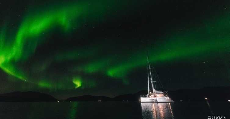 Tromso: 3-Hour Northern Lights Sailing Excursion