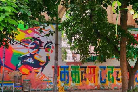 Delhi: arte callejero, antiguo Stepwell y almuerzo del sur de la India