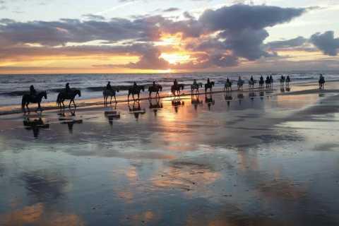 Doñana: Horseback Riding Experience at Sunset