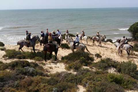 Horse-Riding Tour in Doñana National Park