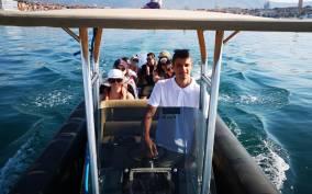 Dubrovnik: Odysseus Cave and 4 Islands Speedboat Tour